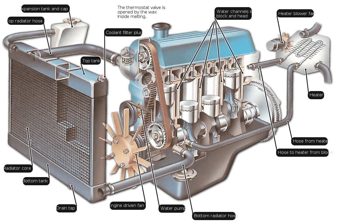 Dromedary-HOW A RADIATOR WORKS | Radiator Supplier